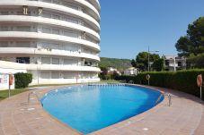 Apartamento en Estartit - Apartamento Medes Parck II-1-2