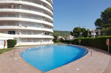 Apartamento en Estartit - Apartamento Medes Park I 4-6