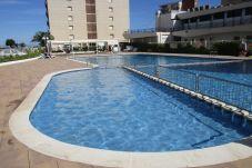 Apartamento en Estartit - Apartamento Rocamaura IV 6-2