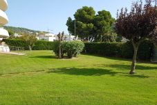 Apartment in Estartit - Apartment Medes Parck II-5-4